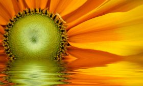 Treći energetski centar (čakra solarnog pleksusa) – osjećaj vlastite moći